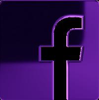 Facebook NOLA Ragdolls
